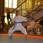 Club Kampioenschappen 2014 - Karate Team Utrecht 2