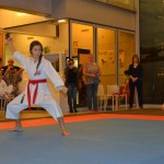 Club Kampioenschappen 2014 - Karate Team Utrecht 3