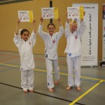 Vanencompetitie 2015 - Karate Team Utrecht