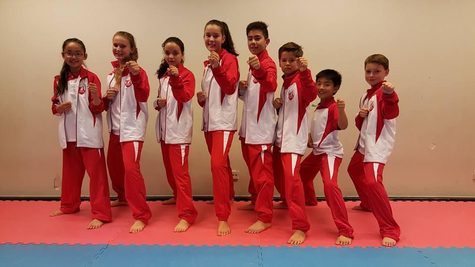 Karate Team Utrecht - trainingspak